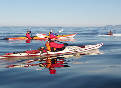 group of kayakers on the water